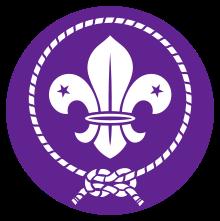 WOSM Logo.png